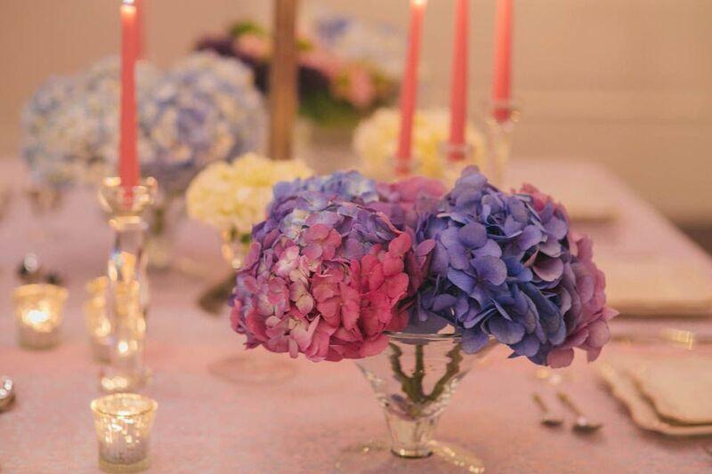 Beverley Wilson London Floral