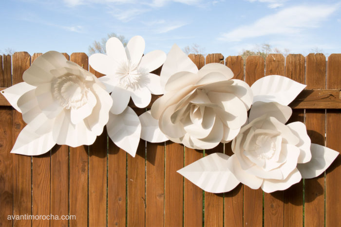 "DIY "" Giant Paper Flower Backdrop. DIY wedding decorations. Cheap homemade wedding decorations. Wedding decorations on a budget. Planning a wedding on a budget. DIY outdoor wedding decorations on a budget. How to plan a wedding on a budget. Making your own wedding decorations."